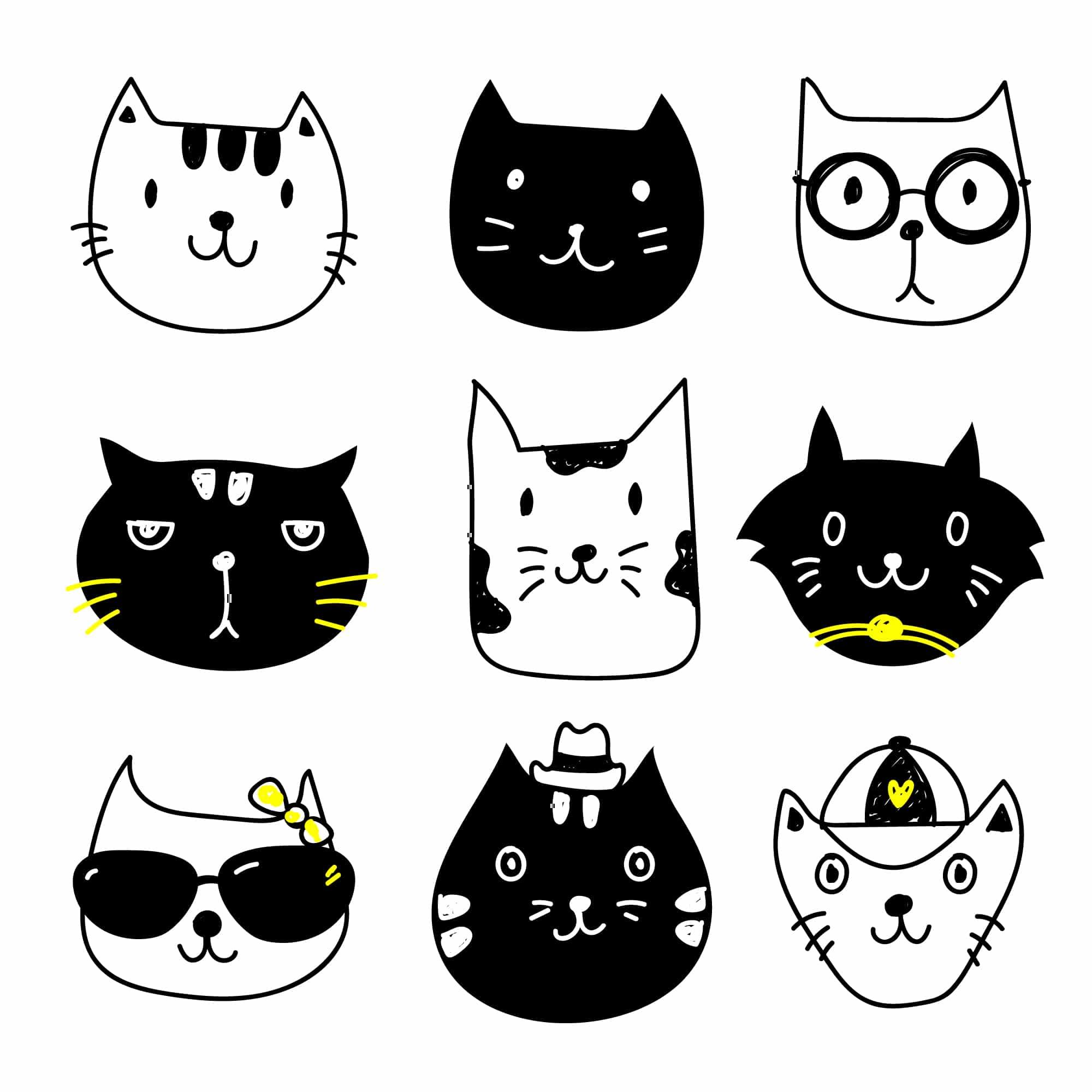 kedi isimleri