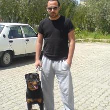 ertunç eroğlu Profile Picture