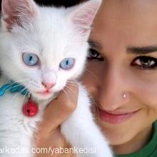 Esra tekin Profile Picture