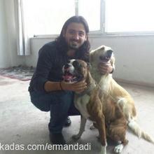 Erman İNCE Profile Picture
