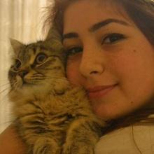 Merve Kuşdan Profile Picture