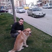 Emre ÖZTAY Profile Picture