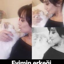 Ayten Ayran Profile Picture