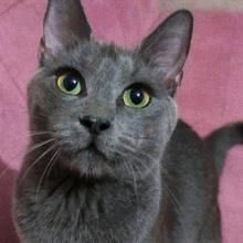 kumrike Profile Picture