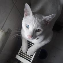 poncik Profile Picture