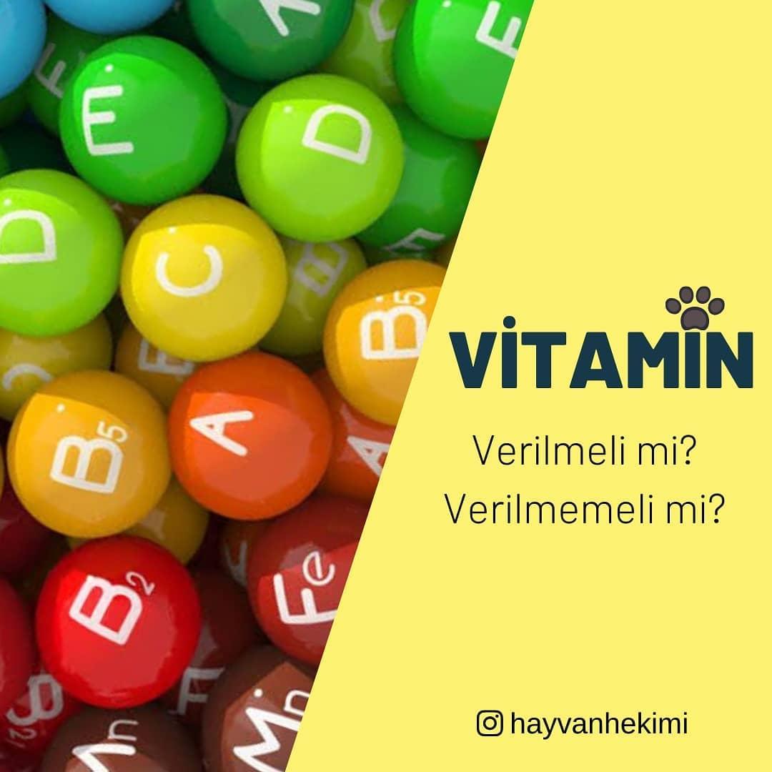 Kedime köpeğime Hangi Marka Vitamini Kullanmalıyım?