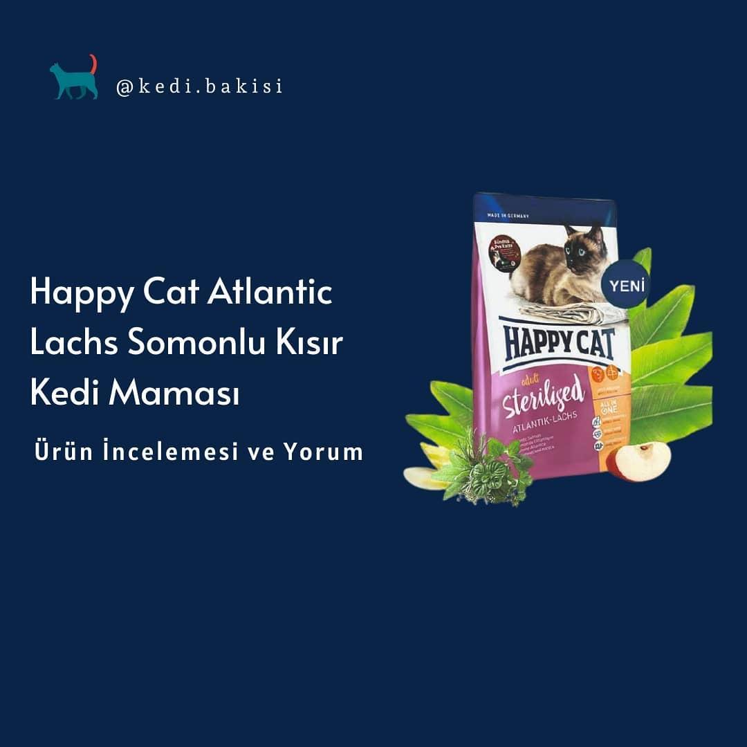 Happy Cat Atlantic Lachs Somonlu Kısır Kedi Maması İncelemesi