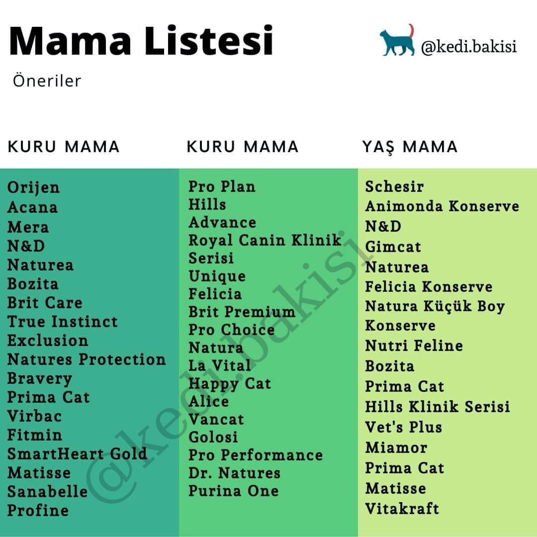 Daha önce Bir Mama Listesi