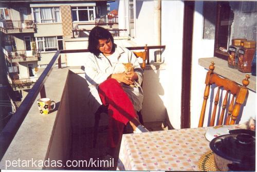 emel adil Profile Picture