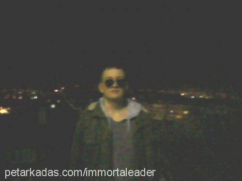 ismail acetmen Profile Picture