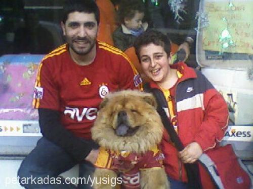 Yusuf Can Özbilek Profile Picture