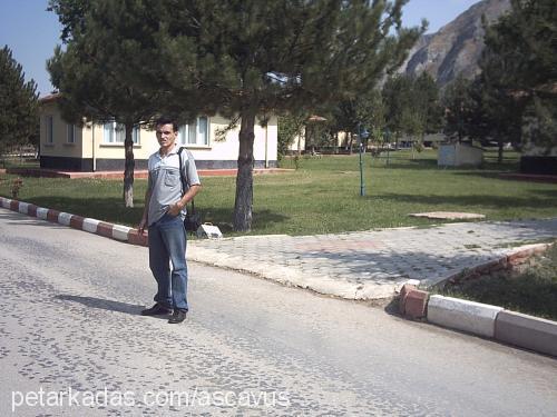 Ahmet(KEMİKSİZ ÜYE) Boyacıoğlu profile picture