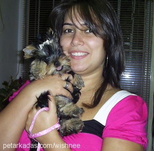 Gizem Tulga Profile Picture