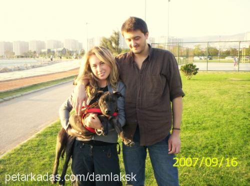 DAMLA KARAKUŞ Profile Picture