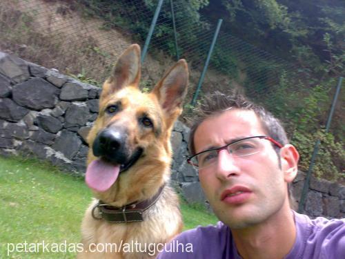 TOPAZ KENNEL ALTUĞ ÇULHA Profile Picture