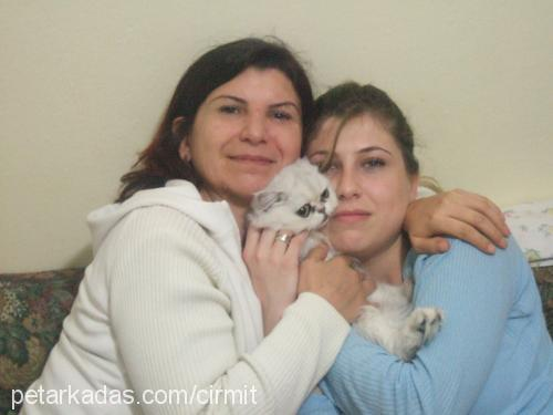 NAZ DENİZ Profile Picture
