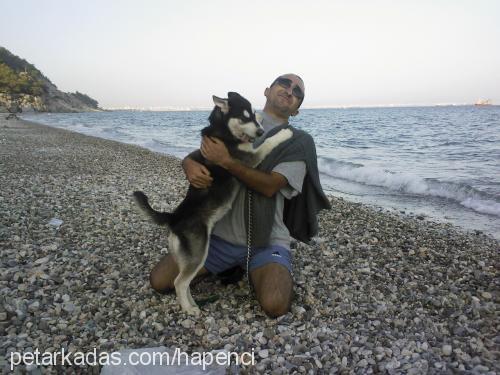 ferda Hapencioğlu Profile Picture