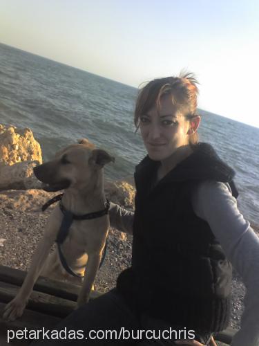 burcu&berkay güner Profile Picture