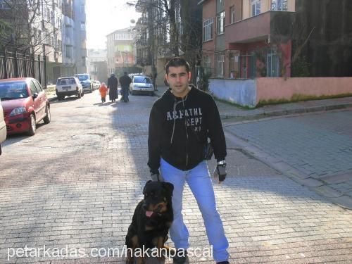 Hakan&Gizem ÖZKAN Profile Picture