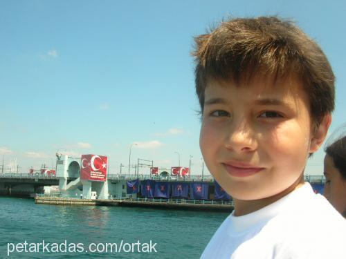 Arda Çevik Profile Picture