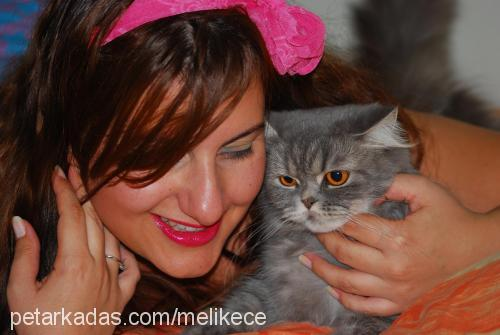 Melike&Yiğit Düzgider profile picture