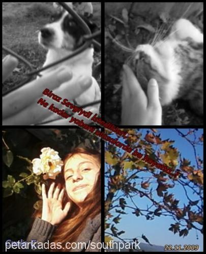 Zocec~..♥ ~°Cmle ---- Profile Picture