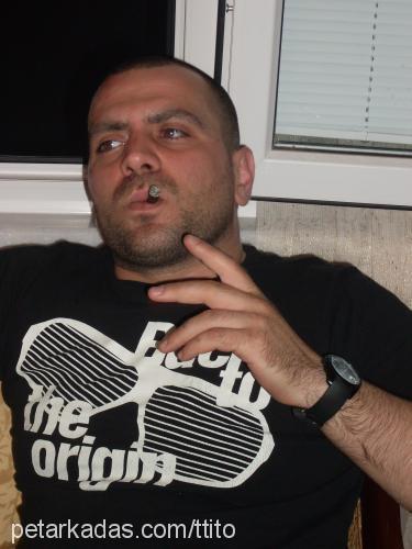 tolga olcer Profile Picture