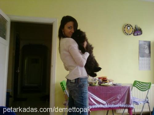 Demet Demiroz Profile Picture