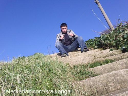 Mehmet Cem OK Profile Picture
