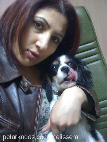 Fatma Bayazit Profile Picture