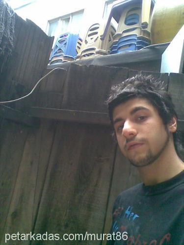 murat yurtsever Profile Picture