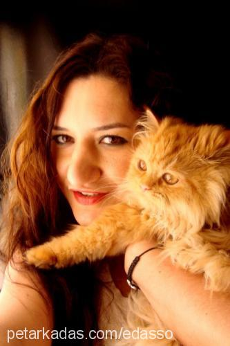 eda & efe ertekin Profile Picture
