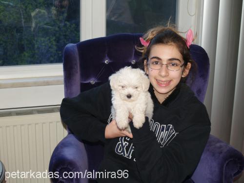ALMİRA AKBAY Profile Picture
