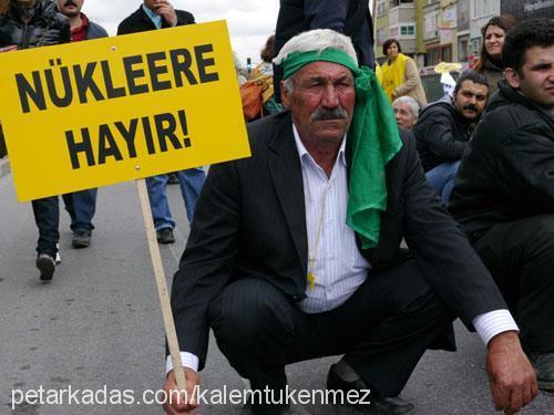 Mehmet Berat Taştan Profile Picture
