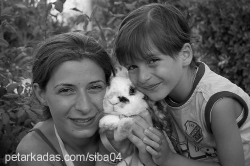 Aysun Sibel Baş Profile Picture