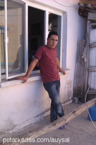 Ali UYSAL Profile Picture