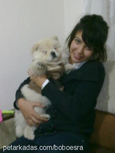 esra günay Profile Picture