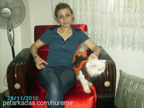 NURCAN NUR Profile Picture