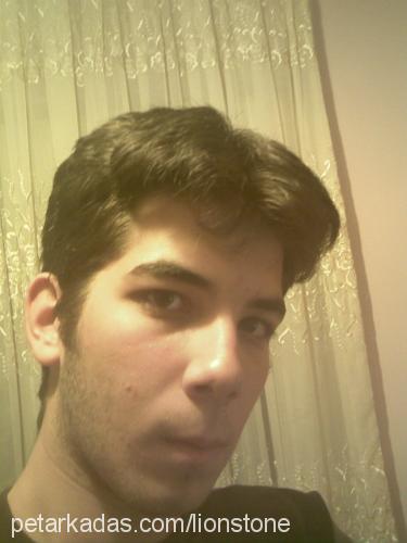Evrim Aslantaş Profile Picture