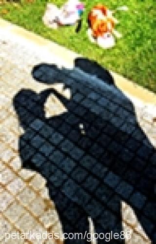 azize-Yagiz okay-Ozturk Profile Picture