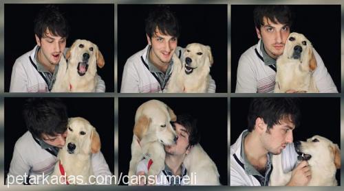 CAN SURMELİ Profile Picture
