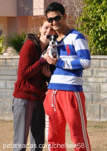 Murat & Kate Akay Profile Picture