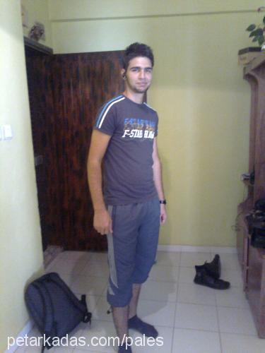 M.Ali ali Profile Picture