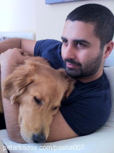 Murat CANASLAN Profile Picture