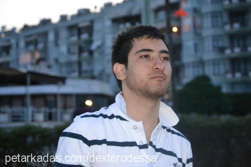 umut cekmen Profile Picture