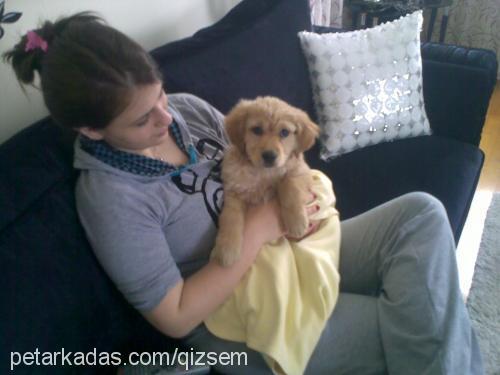 Gizem Cetin Profile Picture