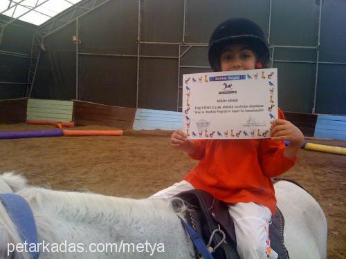 didem metya Profile Picture