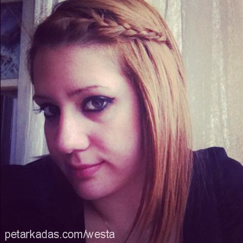melıs elmen Profile Picture