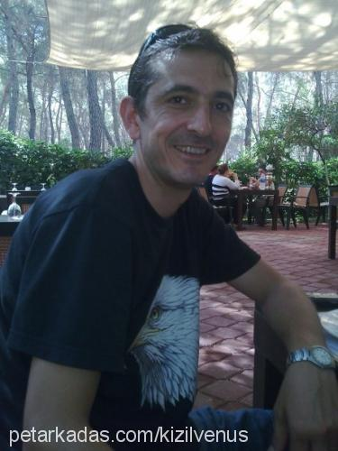 Metin ÖZKURT Profile Picture
