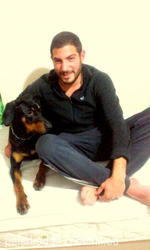Nedim GİZLİ Profile Picture